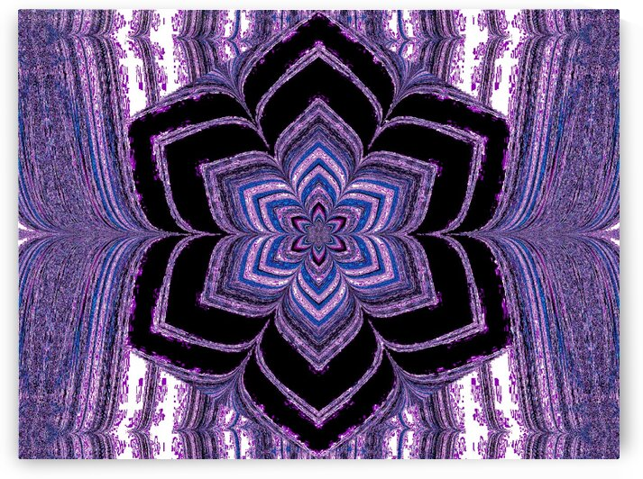 Purple And Blue Lotus In Black by Sherrie Larch