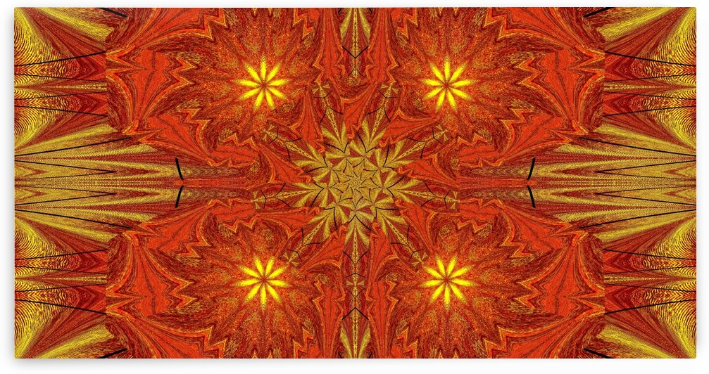 Golden Lotus In Light 4 by Sherrie Larch