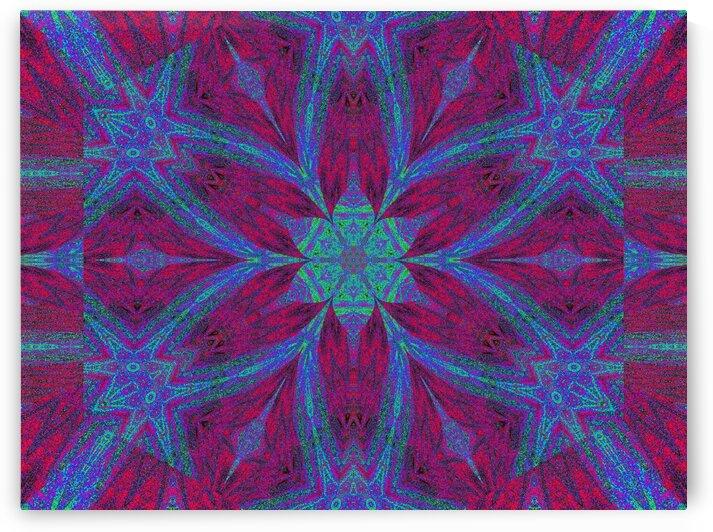 Wonder Lotus by Sherrie Larch