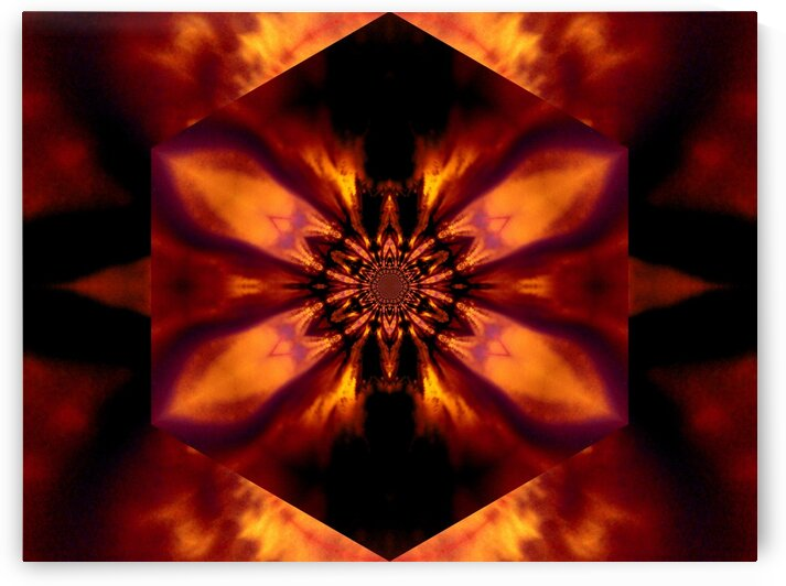 Fire Lotus Gold 2 by Sherrie Larch
