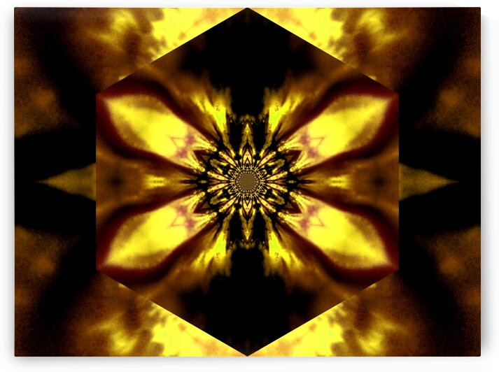 Fire Lotus Yellow 2 by Sherrie Larch