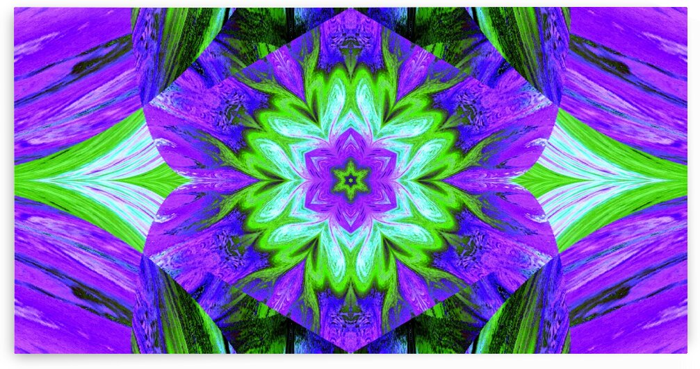Painted Lotus 2 by Sherrie Larch