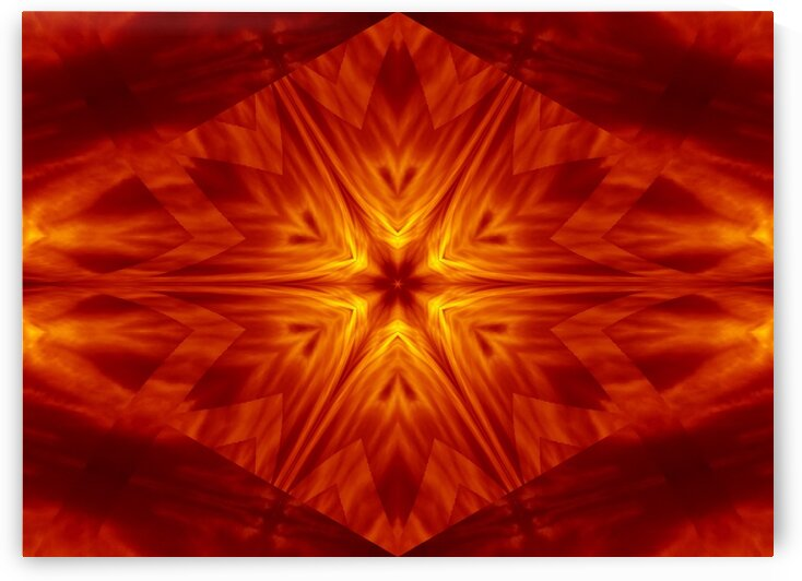 Fire Flowers 1 by Sherrie Larch