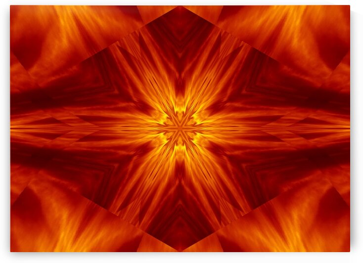 Fire Flowers 2 by Sherrie Larch