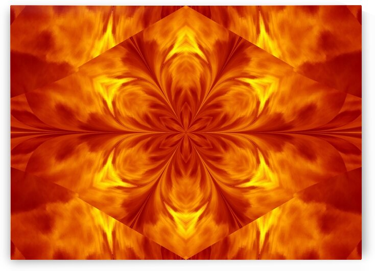 Fire Flowers 7 by Sherrie Larch