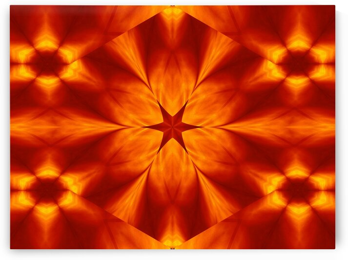 Fire Flowers 15 by Sherrie Larch