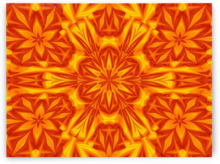 Fire Flowers 32 by Sherrie Larch