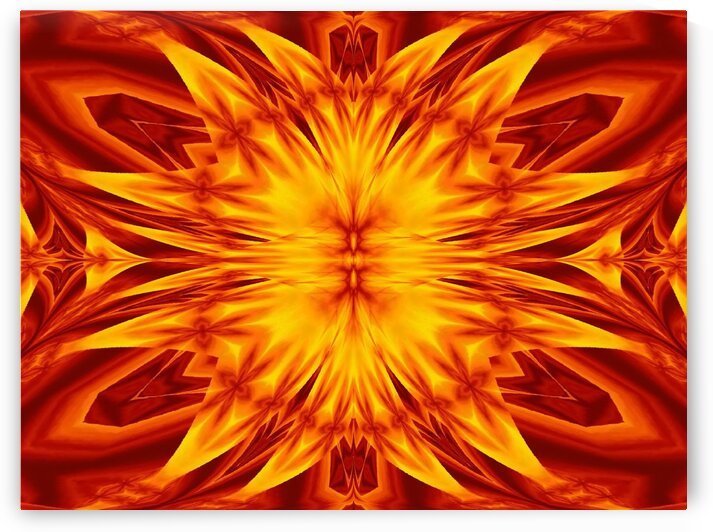Fire Flowers 38 by Sherrie Larch
