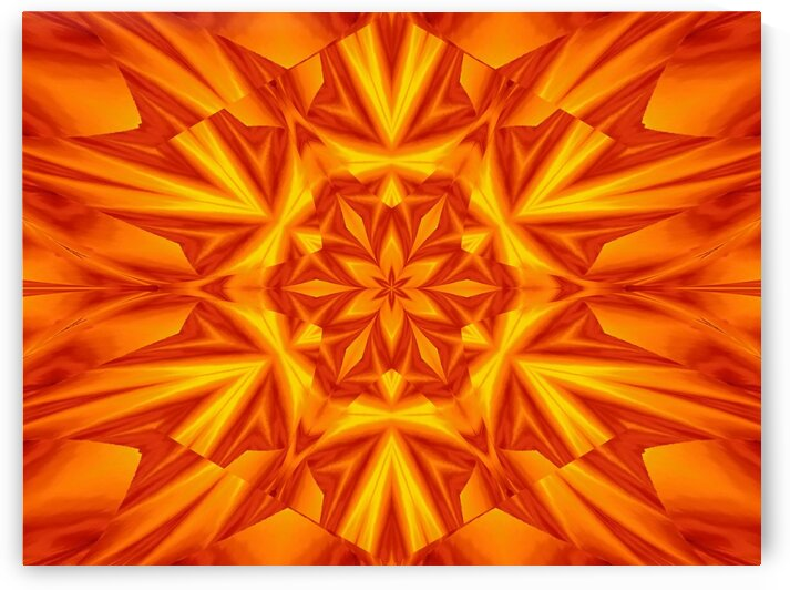 Fire Flowers 41 by Sherrie Larch