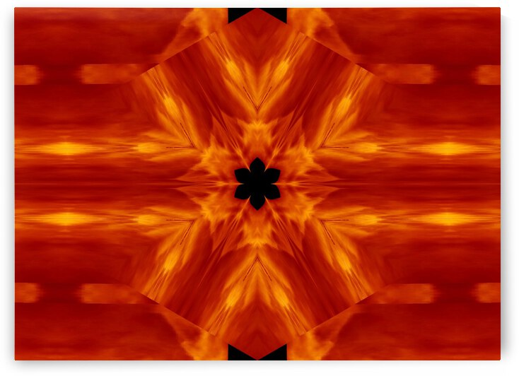 Fire Flowers 62 by Sherrie Larch