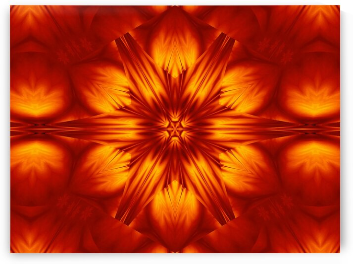 Fire Flowers 74 by Sherrie Larch