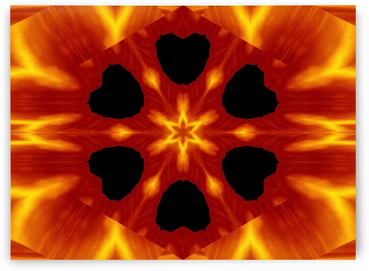 Fire Flowers 87 by Sherrie Larch