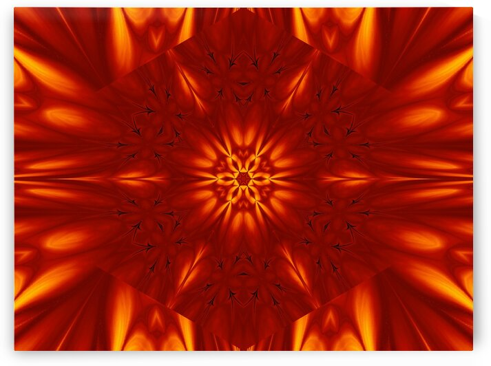 Fire Flowers 100 by Sherrie Larch