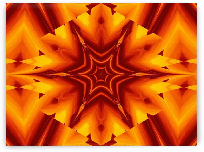 Fire Flowers 110 by Sherrie Larch