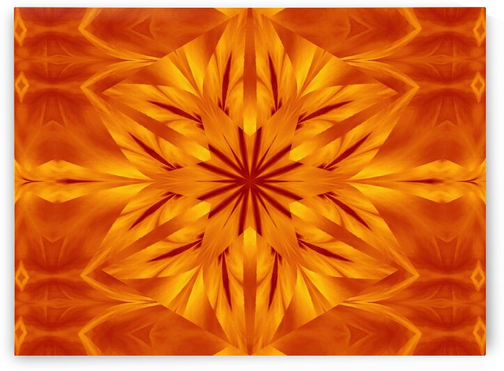 Fire Flowers 118 by Sherrie Larch