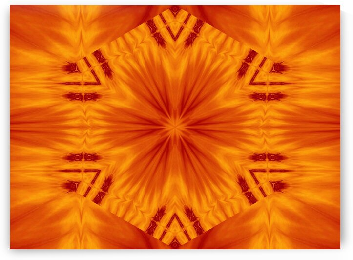 Fire Flowers 121 by Sherrie Larch