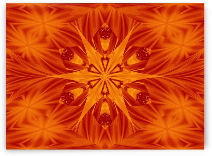 Fire Flowers 122 by Sherrie Larch
