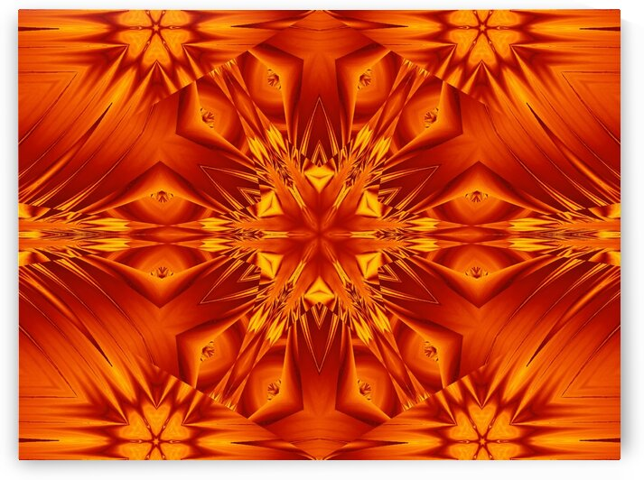 Fire Flowers 132 by Sherrie Larch