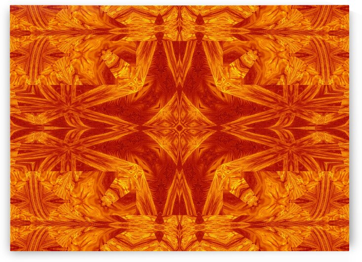 Fire Flowers 181 by Sherrie Larch