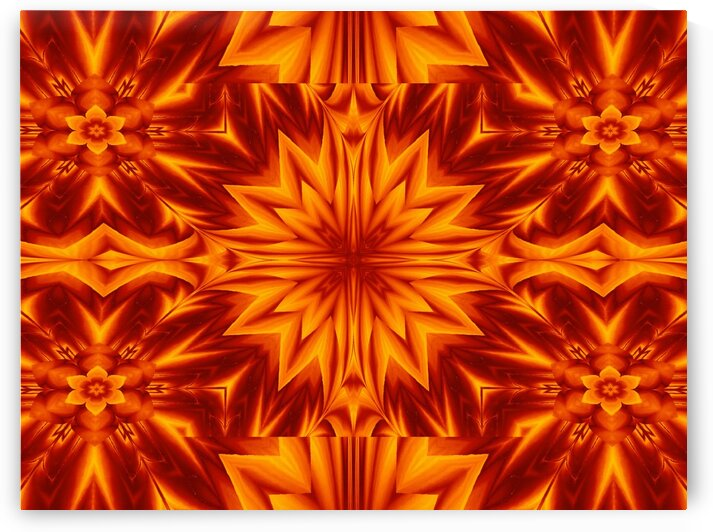 Fire Flowers 236 by Sherrie Larch