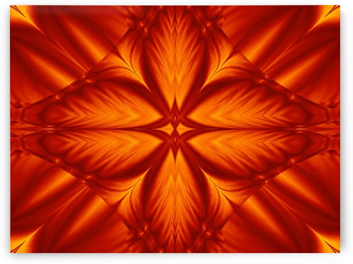 Fire Flowers 248 by Sherrie Larch