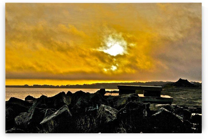 Sunrise 112715-3 by Sue Bonior