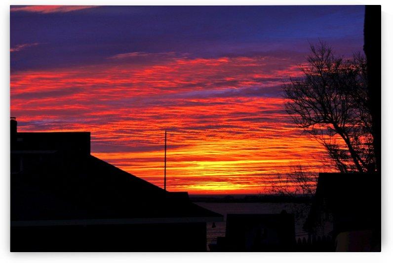 Red Sky at Morn by Sue Bonior
