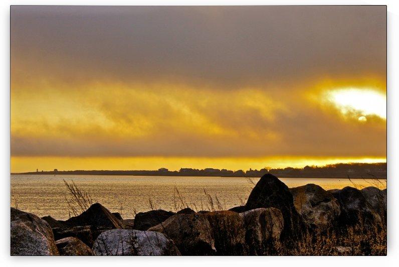 Sunrise 112715-2 by Sue Bonior