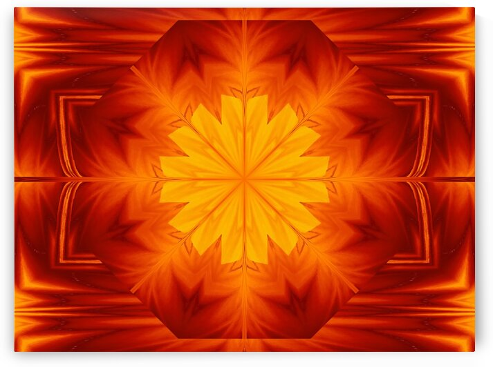Fire Flowers 259 by Sherrie Larch