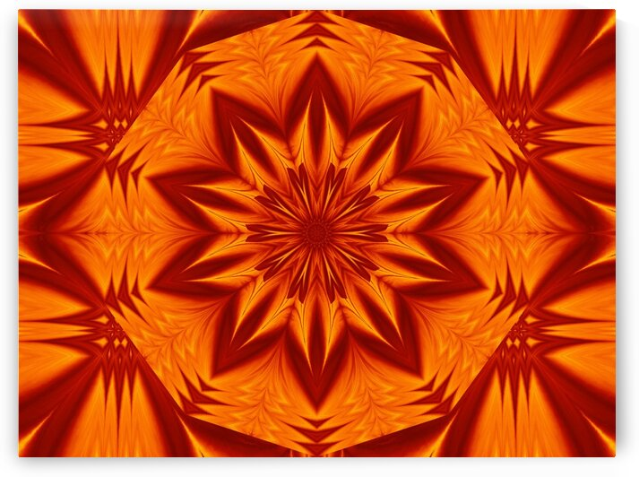 Fire Flowers 266 by Sherrie Larch