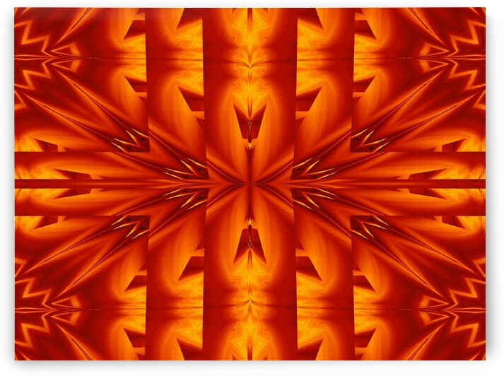 Fire Flowers 273 by Sherrie Larch