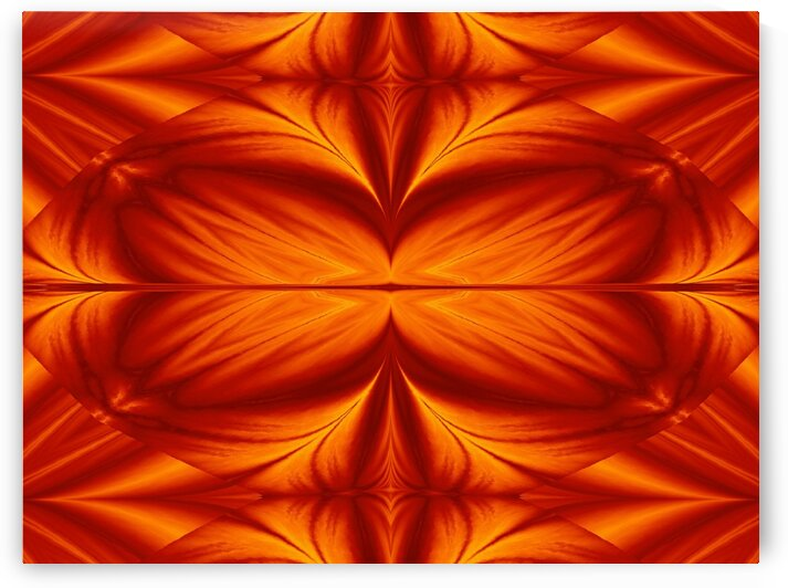 Fire Flowers 281 by Sherrie Larch