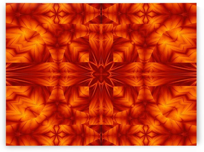 Fire Flowers 293 by Sherrie Larch