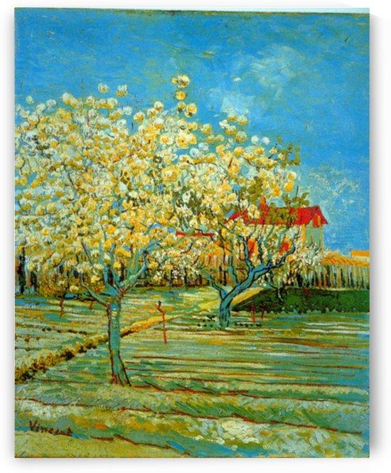 Orchard by Van Gogh by Van Gogh