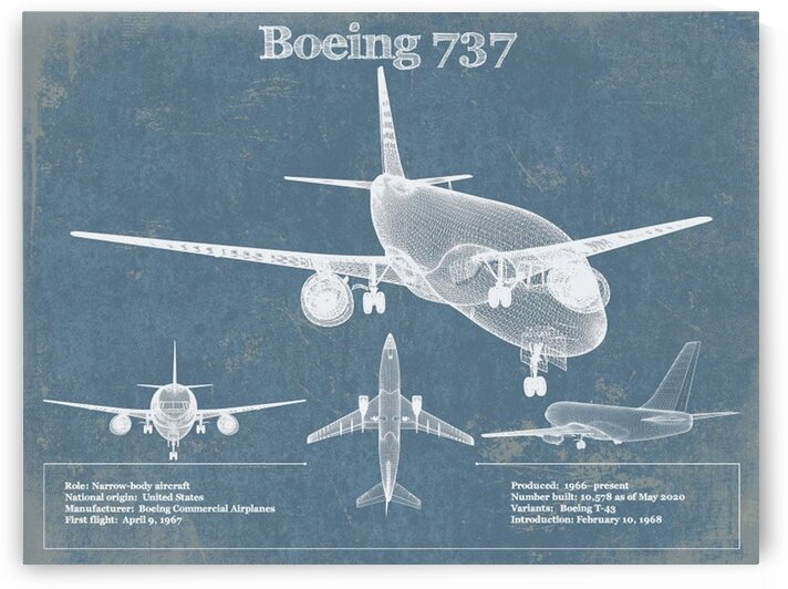 737 by Acquired Aviation