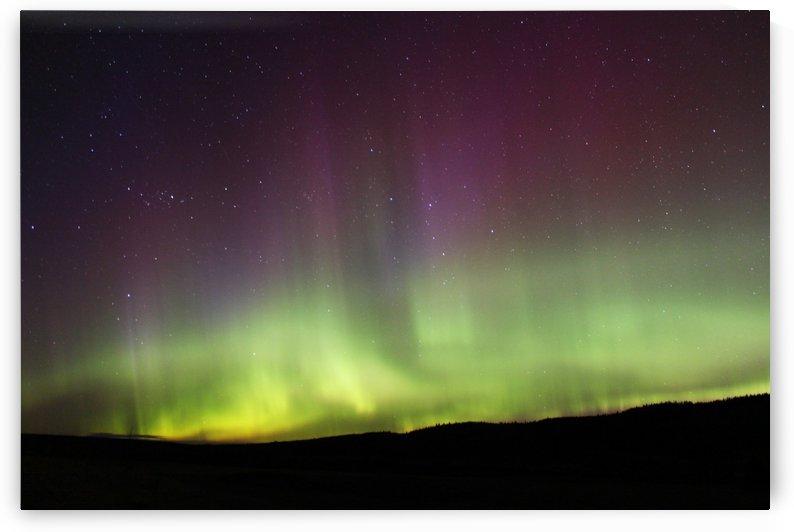Aurora Borealis by Jody Majko