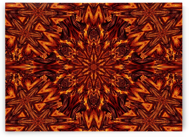 Eternal Flame Flowers 85 by Sherrie Larch