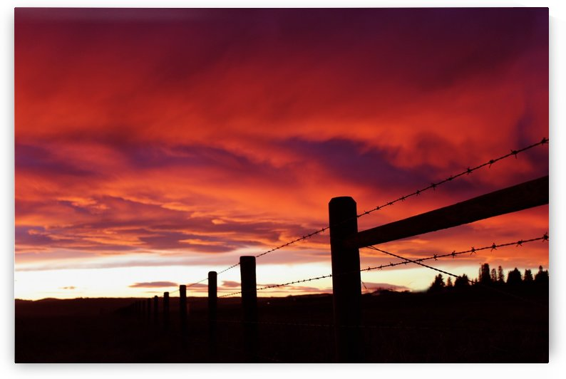 Chinook Arch Sunset by Jody Majko