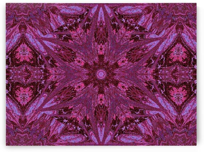 Sophornitella 11 by Sherrie Larch