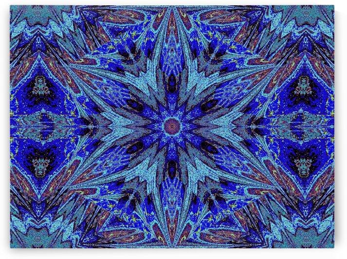Sophornitella 12 by Sherrie Larch