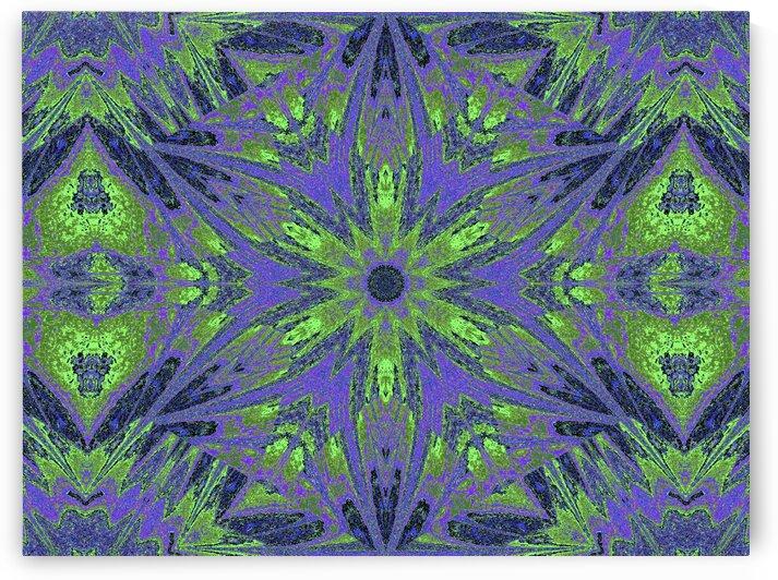 Sophornitella 13 by Sherrie Larch