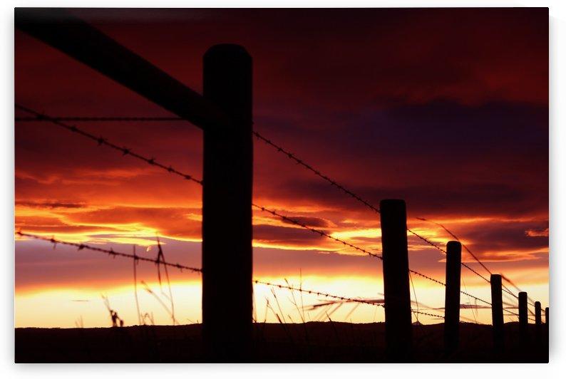 Chinook sunrise by Jody Majko