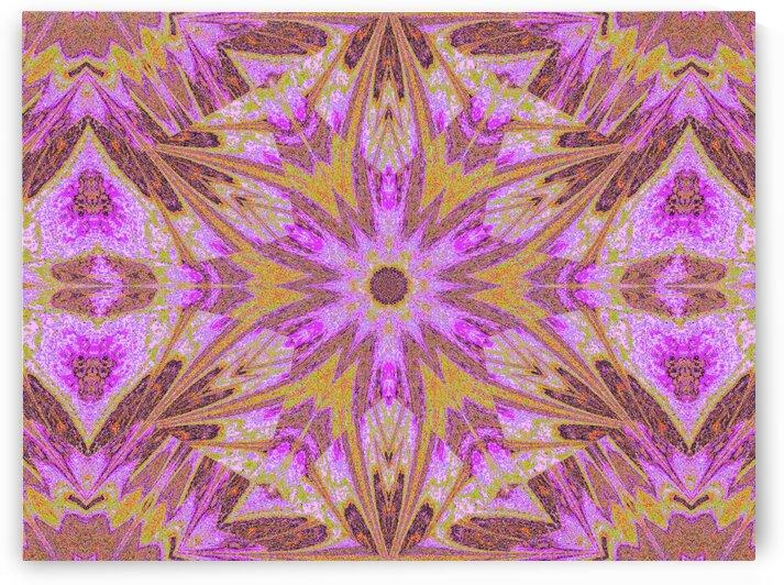Sophornitella 15 by Sherrie Larch