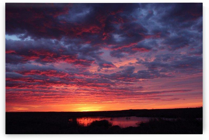 Spring sunrise by Jody Majko