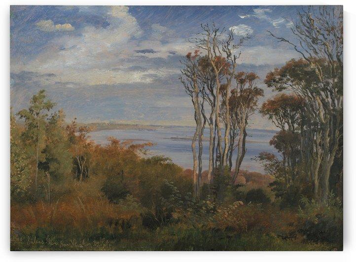 Kolas Wood, Vejrhoj by Johan Thomas Lundbye