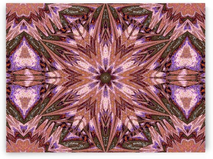 Sophornitella 42 by Sherrie Larch