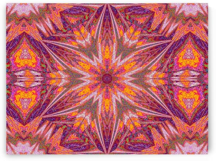 Sophornitella 47 by Sherrie Larch