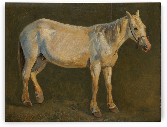 Right view of a standing white horse by Johan Thomas Lundbye