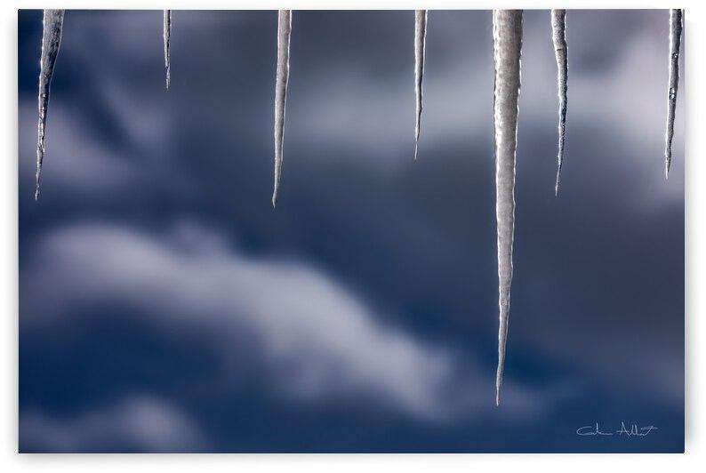 Les glacons by Glenn Albert