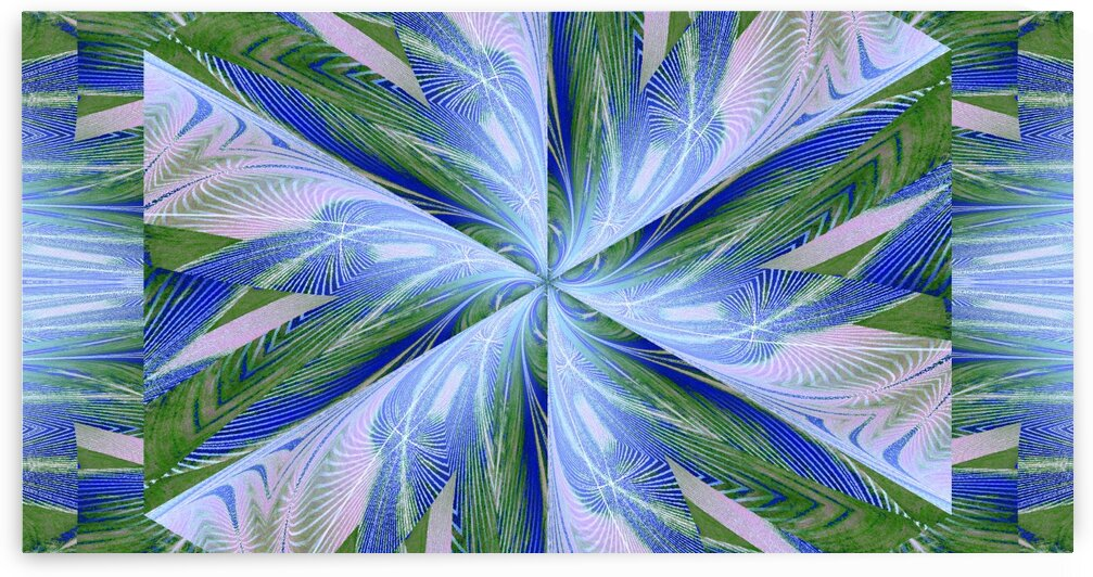 Wildflower In Spiral 3 by Sherrie Larch